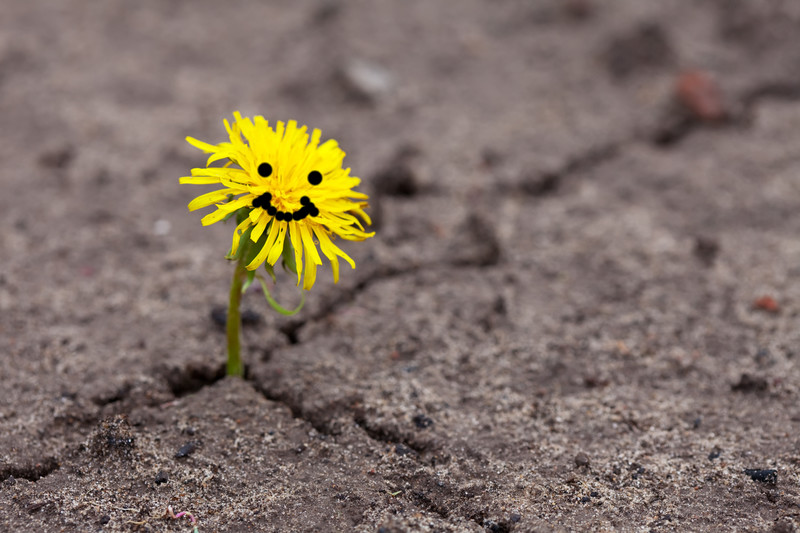 Lachen, Glück, Selbstbewusstsein